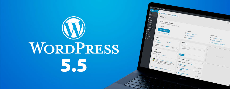 WordPress 5.5 -